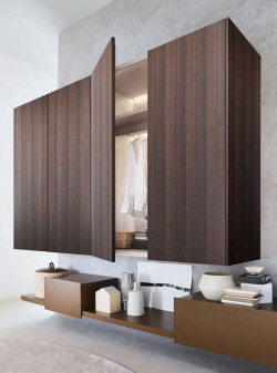 Contemporary wardrobe / wall-mounted / not specified