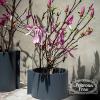 leather-pot-oggetti-object-vaso-vase-poltrona-frau-pelle-original-design-promo-cattelan-simona-cremascoli_2